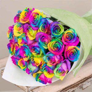 24-Rainbow-Roses